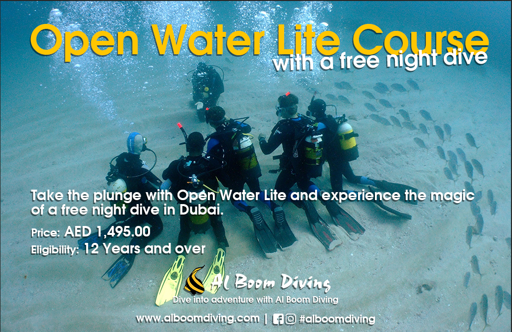 Open Water Lite Course with a Free Night Dive